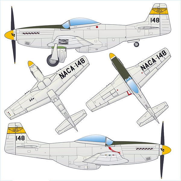 770197 - Arsenal-m P 51D Mustang Fighter Plane NACA