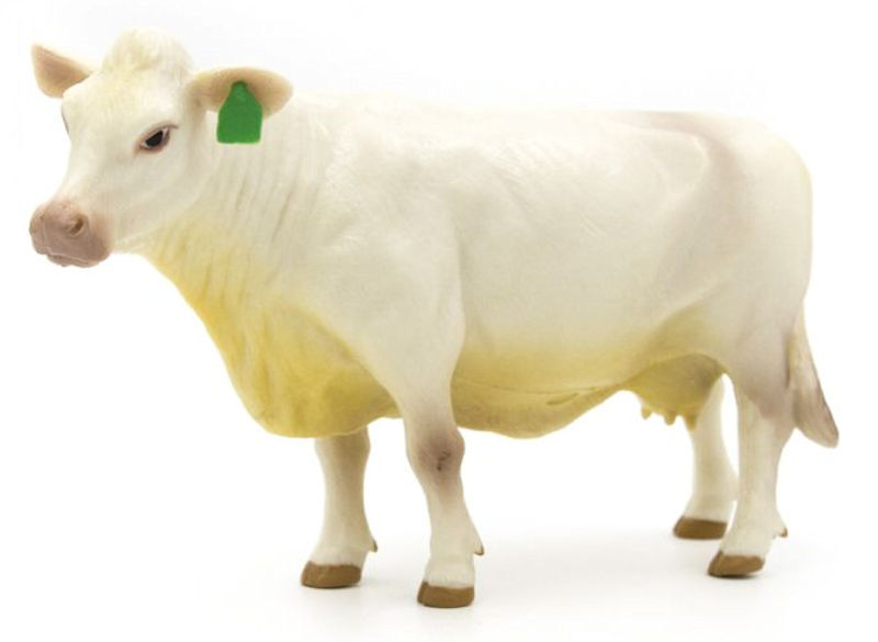 500258 - Little Buster Charolais Cow SUPER DURABLE construction Bring