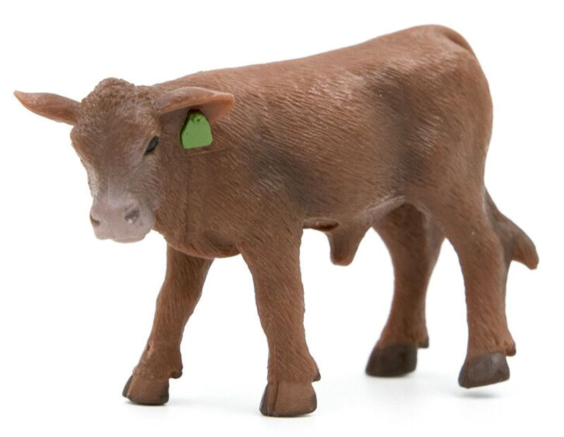 500266 - Little Buster Red Angus Calf SUPER DURABLE Bring