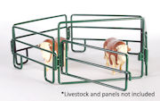 LITTLE BUSTER - 500221 - Walk-Through Gate