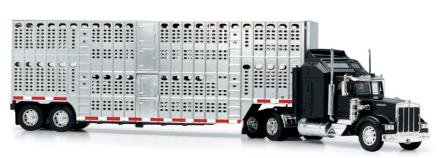 15243 - New-Ray Toys Kenworth W900