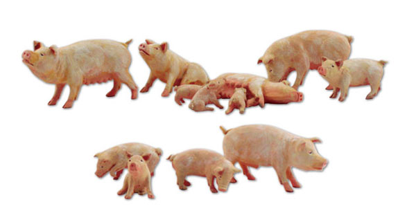 A2218 - Woodland Scenics Yorkshire Pigs 12 Piece Set N Scale
