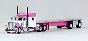 TONKIN - 18TNS004 - Peterbilt 389 with
